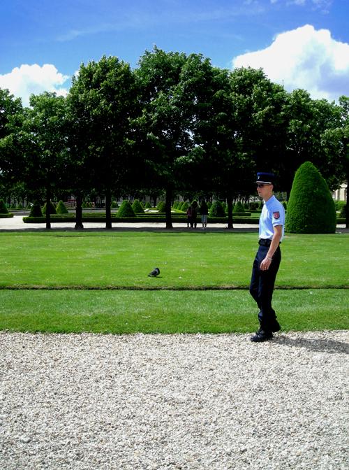 grass police